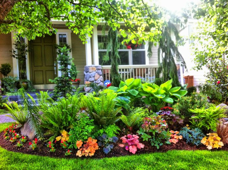 15 best smelling outdoor plants for your garden blogrope. Black Bedroom Furniture Sets. Home Design Ideas